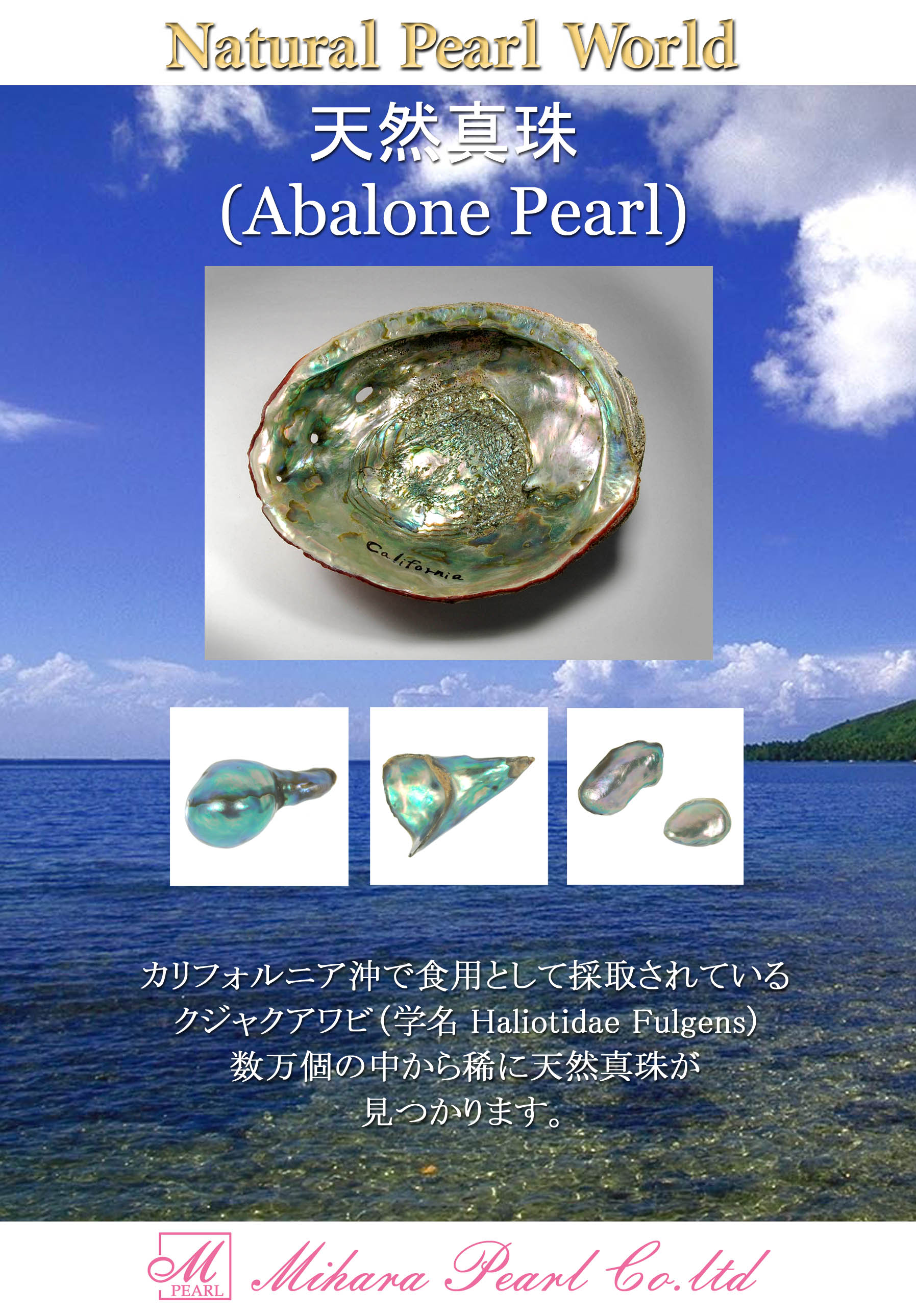 abalone_for_download
